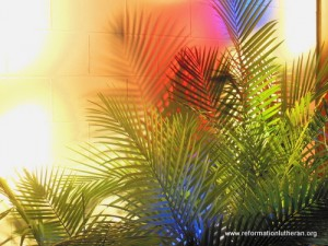 palm sunday palms stained glass church